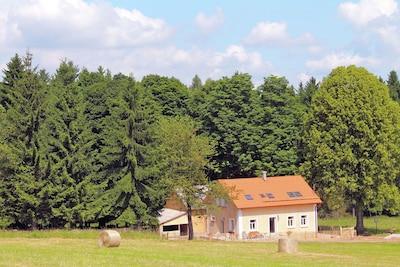 Planá u Mariánských Lázní, Pilsen Region, Tschechische Republik