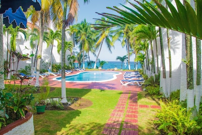 Steps away from our luscious garden, pool and ocean