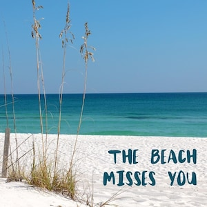 BEACH SERVICE FREE WITH RENTAL🌴🐬SUNSET IN PARADISE 3B - HEATED   POOL.