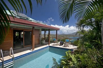 Mooncottage Coral Bay pool - Dive in! - St. John, USVI Villa Rental - Mooncottag