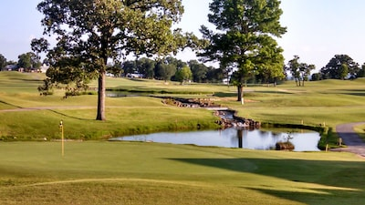 WELCOME TO BRANSON FAIRWAY DREAMS.  MILLION DOLLAR VIEW FROM PATIO