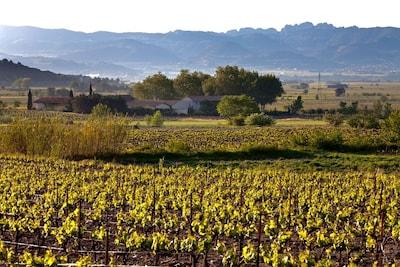 Cairanne, Vaucluse (departement), Frankrijk