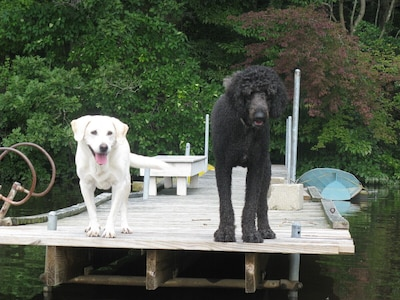Our Chrisy & Cooper on our dock with rowboat (hand-built Annapolis Wherry,)