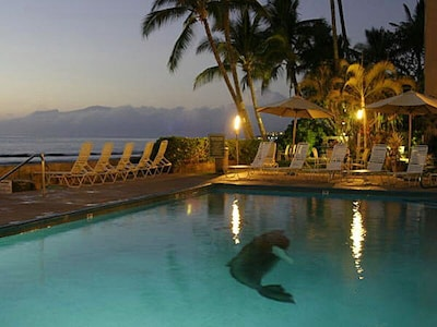 Enjoy the pool at sunset, overlooking the ocean and neighbor islands