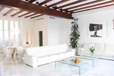 Huge living space - Loft