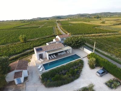 360 degrés entouré de vignes