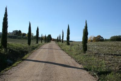 Chemin d'acces privée