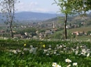 Vista sui monti