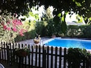 Mulberry tree provides welcome shade when needed. Pool fenced off for safety