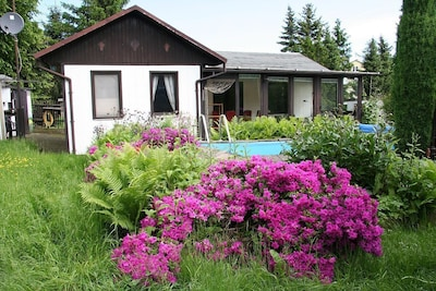 Bungalow + Pool mit Azaleenblüte
