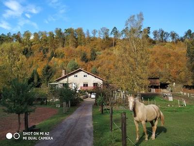 Volksberg, Bas-Rhin, France