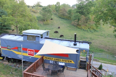 See the bison in the field!  Enjoy your morning coffee on the nice large deck