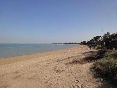 La plage à 350m. Oléron, meilleur ensoleillement de la côte atlantique française
