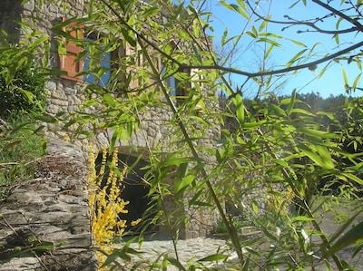 Facade principale cote vallées et garage