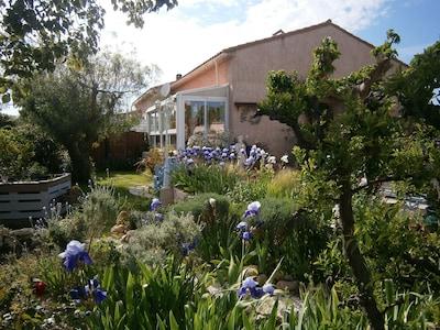 autour de la location, les iris du printemps.