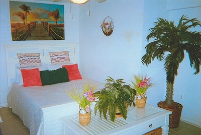 Tropical paradise queen size bedroom with picture to place you there.