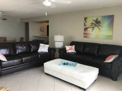 Living room with 2 comfortable queen sofa beds