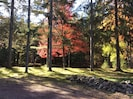 Every season at the cabin is beautiful but autumn is my favorite