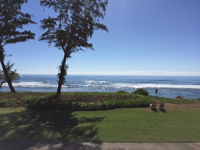 View looking straight out from the lanai. Feel the breeze and take in the view!