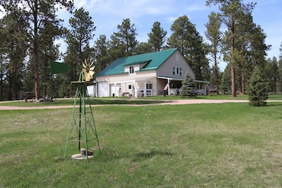 Grandma's House in the Woods in May 2019