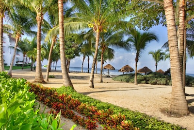 Palapas and Palm Trees. A perfect combination for relaxation and restoration