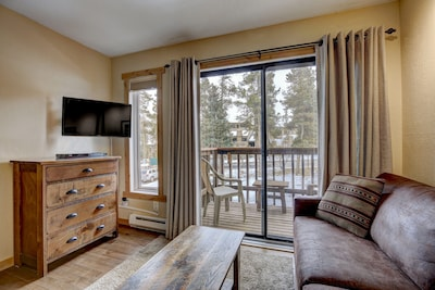Living room with Murphy bed up creates a spacious room during the day.