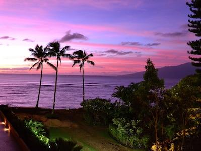 Honokowai, Hawaï, États-Unis d'Amérique