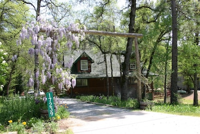 Enjoy the 'wisteria' welcome as you enter the property.