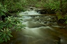 Beautiful creek runs through our entire property.