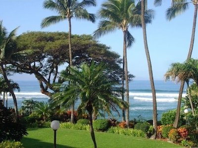 Catch a wave! View from the lanai!