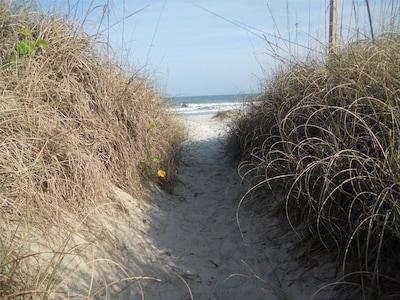 Path to the beach, 300 steps away.