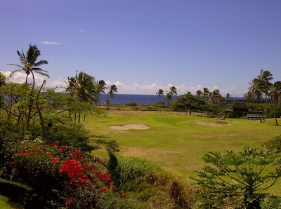 Listen to the ocean surf and enjoy the  gardenias from your private lanai!