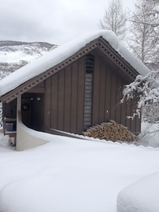 Chalet in Winter - front view from street