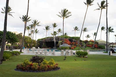 Waterfall Swimming Pools ~2417 Oceanfront Resort Lihue~