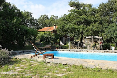 Pool of the house