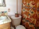 Bathroom -custom tile