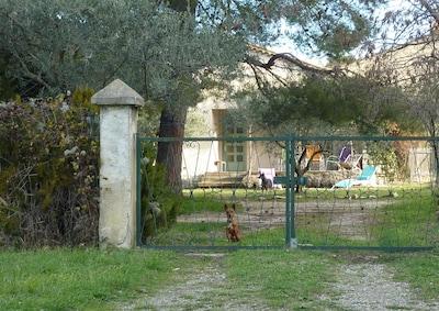 Jardin privé, entouré de vignes, mais seulementà 5 min à pieds de la boulangerie