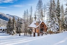 Beautiful Ponderosa Chalet, a magical treehouse ON the slope!