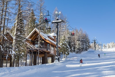 Beautiful Ponderosa Chalet, the treehouse ON the slope- best ski-in/ski-out EVER!