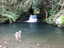 swim in the pool, or go thru the giant culvert & discover your own Jurassic park