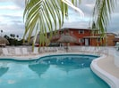 Our solar heated pool with tiki huts with lots of chairs for sunning or resting