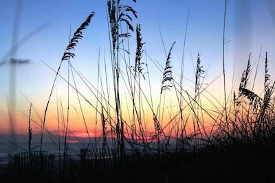 Gulf Resort Beach, Floride, États-Unis d'Amérique
