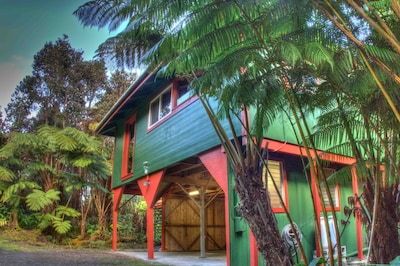 Hale Hubner rests in the heart of the lush fern rainforest of Volcano Village