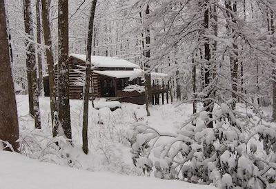 A winter wonderland Lots of beautiful snow