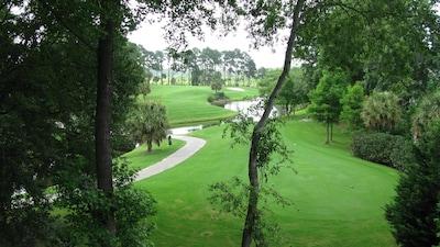 Forestbrook, South Carolina, United States of America
