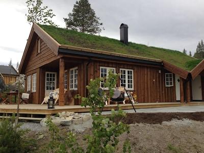Gol, Viken, Norway