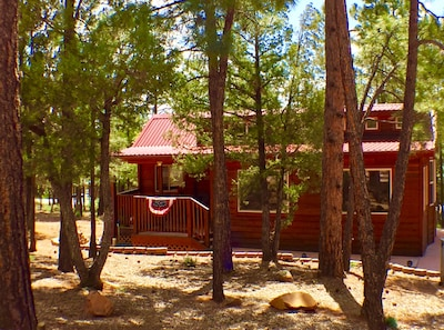 Check Our This Impeccable Cabin in the Ponderosa Pines of the White Mountains AZ