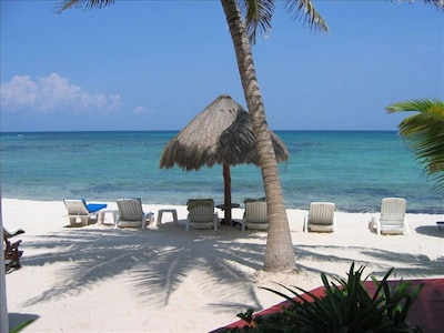 Palapas and lounge chairs on the beach