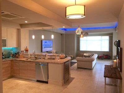 Kitchen & Living Room Areas