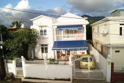 Bambous, District de Rivière Noire, Île Maurice